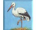 logo-cicogna